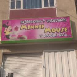 Expresiones y Variedades Minnie Mouse en Bogotá