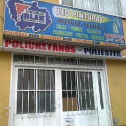 Leo pinturas en Bogotá