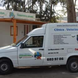 Clínica Veterinaria Territorio Animal en Santiago