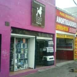 Casa Groaming en Bogotá
