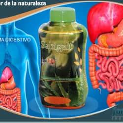 For Life Institute en Bogotá