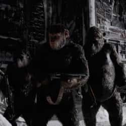 El Planeta de los Simios: Guerra