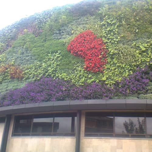 Secretaría Distrital de Ambiente en Bogotá 2