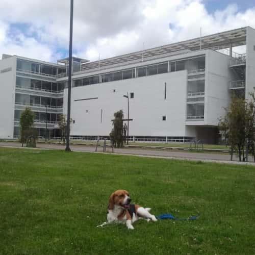 Edificio de Ciencia y Tecnología Universidad Nacional de Colombia  en Bogotá 8