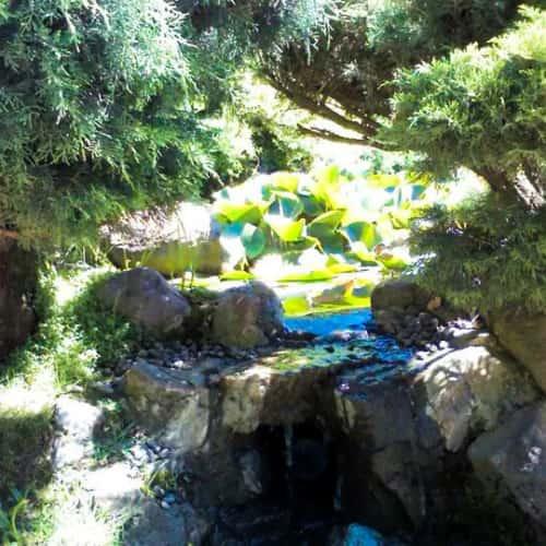 Jardín Japonés - Parque Metropolitano de Santiago en Bogotá 2