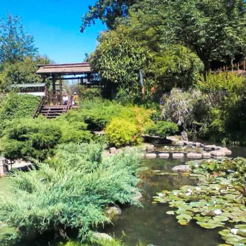Jardín Japonés - Parque Metropolitano de Santiago en Bogotá 8