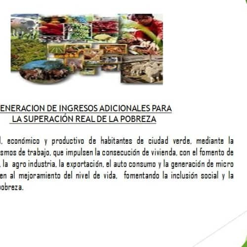 ONG Árbol Fuente de Vida en Bogotá 11