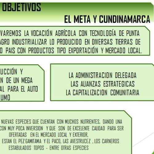 ONG Árbol Fuente de Vida en Bogotá 4