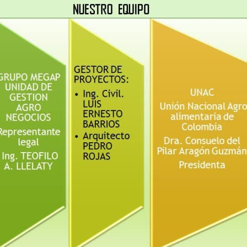 ONG Árbol Fuente de Vida en Bogotá 3
