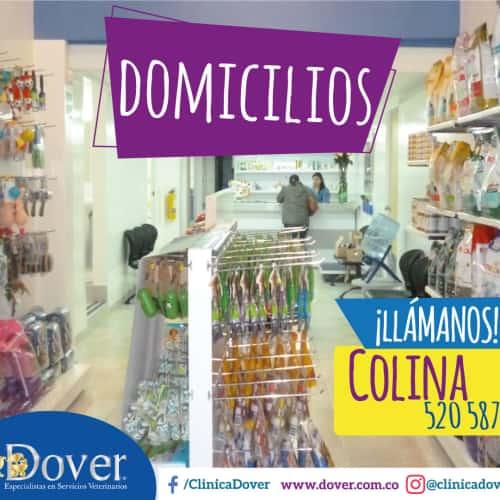 Clínica Veterinaria Dover Carrera 58 en Bogotá 3
