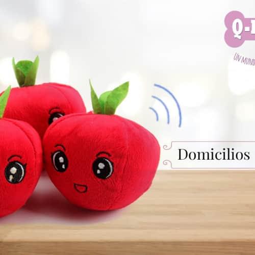 Q-Kipet en Bogotá 11