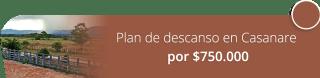 Plan de descanso en Casanare por $750.000 - Tatú Tours Colombia