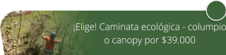 Caminata ecológica o columpio extremo o canopy por $39.000 - Lomitas Gourmet