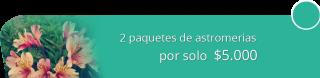 Eventos Leonardo Peña - 2 paquetes de astromerias por solo $5.000