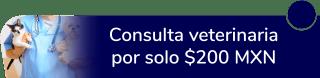 Consulta veterinaria por sólo $200 MXN - Patasarriba
