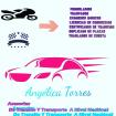 Asesorias De Transito Y Transporte At