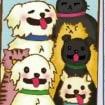 Mostricos Pet Shop