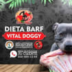 Bars Vital Doggy