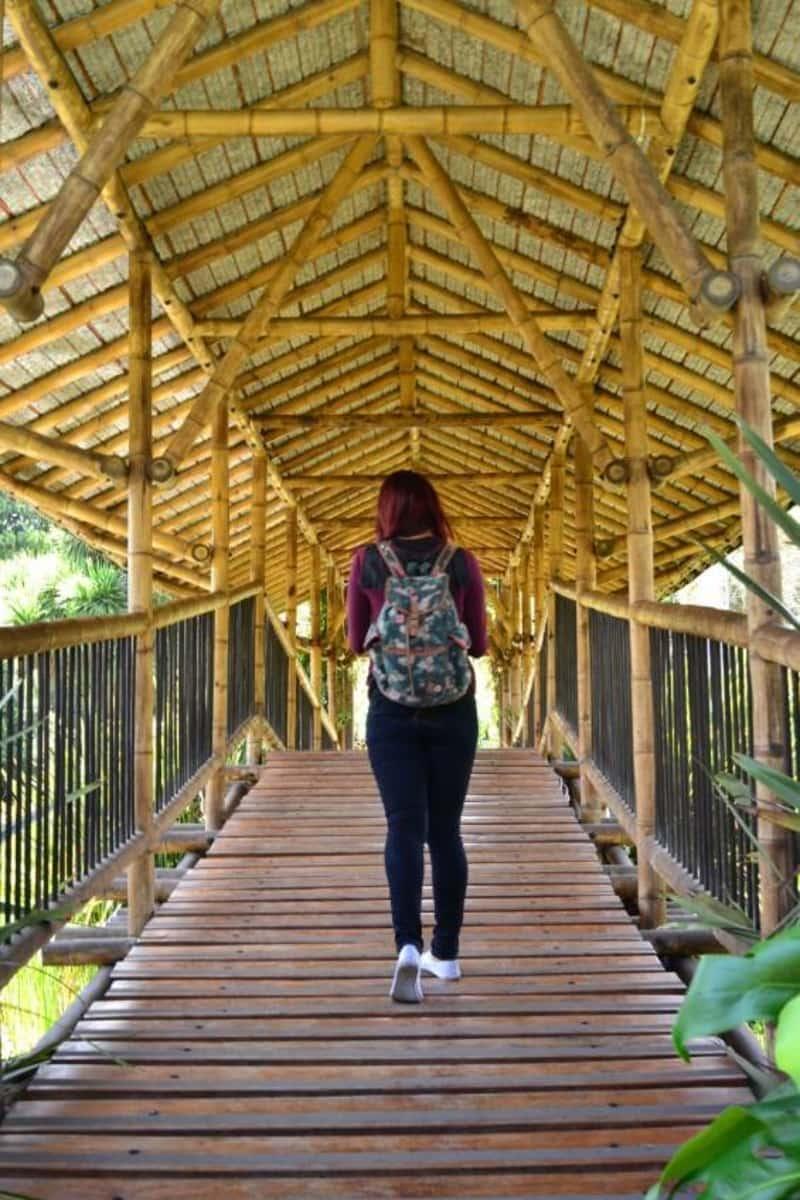 Fotos de Jardín Botánico José Celestino Mutis en Barrios Unidos ...