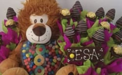 Eventos Chocolates Sofia