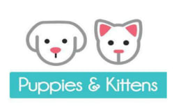 Horus Pet Tutties & Kittens