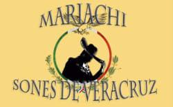 Mariachi en Bogota Sones de Veracruz