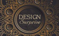 Design Surprise