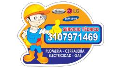 Servicios Técnicos