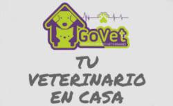 GoVet Servicio Médico Veterinario a Domicilio