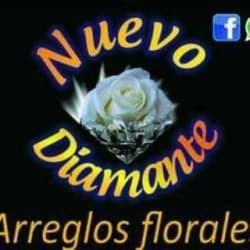 Nuevo Diamante Arreglos Florales
