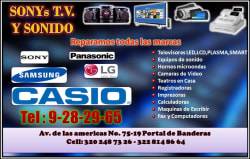Sony´s Tv y Sonido-Casio´s Tec Registradiras
