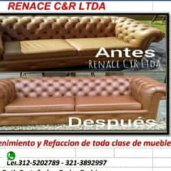 Renace Cyr Ltda