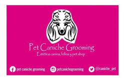 Pet Caniche Grooming