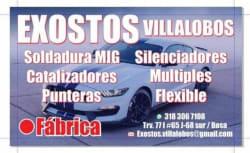 Exostos Villalobos