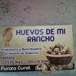 Huevos de mi rancho