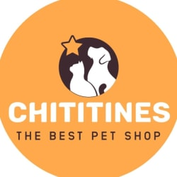 Chititines Pet Shop