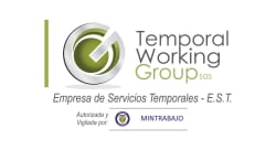 Temporal Working Group