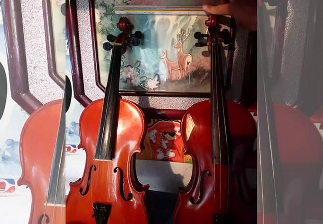 Revisión general de violín o viola