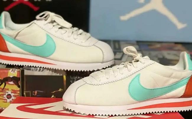 Tenis Nike cortez en colores varios