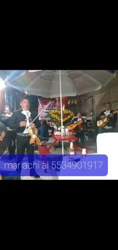 Servicio de mariachi para serenata