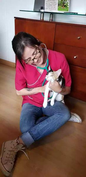 Servicio de consulta veterinaria a domicilio