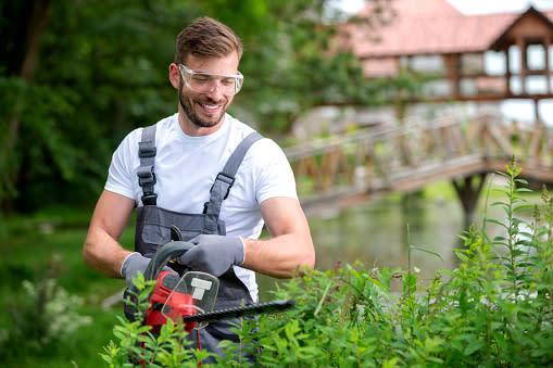 Jardinería: Corte de pasto