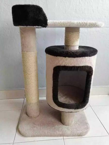 Gimnasio para gatos