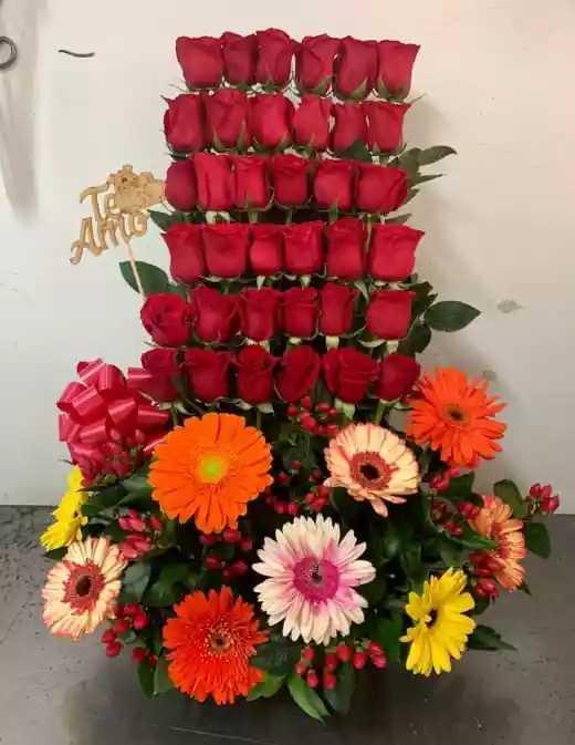 Milagros 2 en rosas