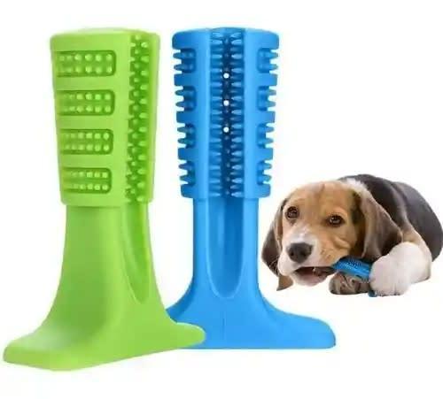 Cepillo de dientes para perro