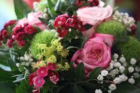 Regala una docena de rosas.