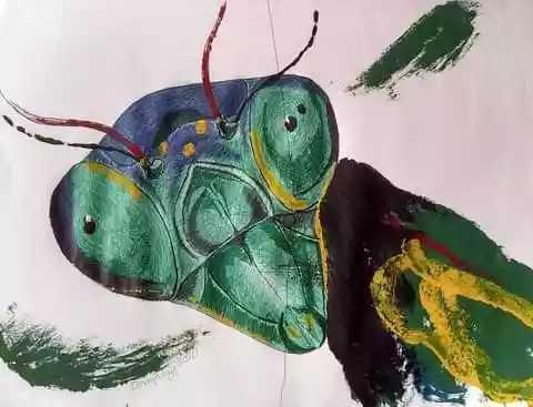 Mantis religiosa, 2020