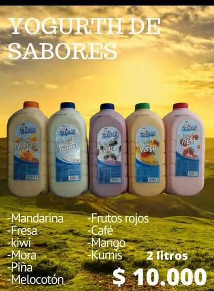 Yogurt artesanal por 2 litros