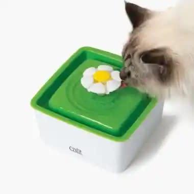 Fuente para gato