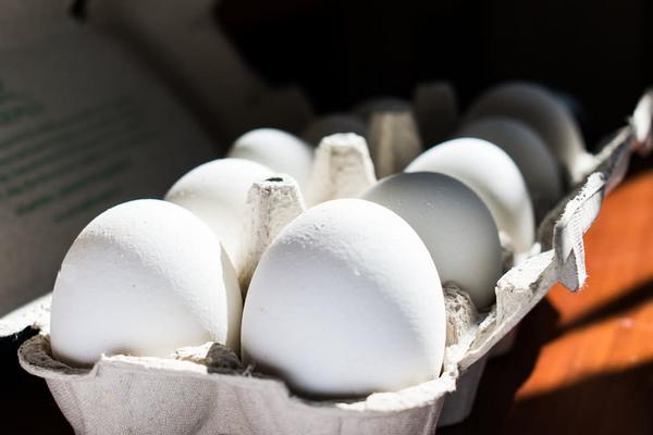 Kilo de huevo
